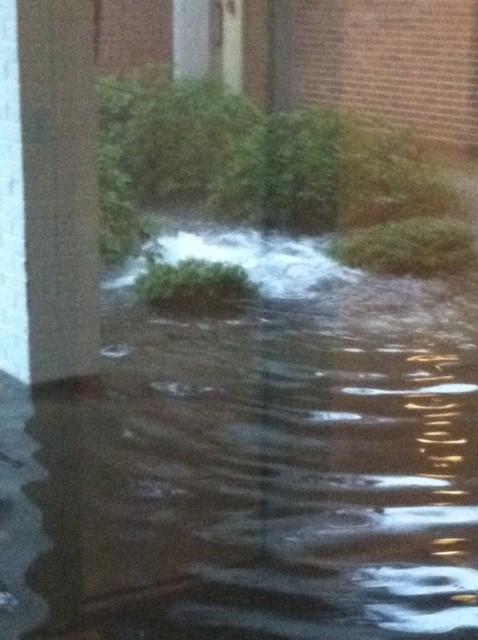 floodphoto2